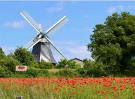 VON POLL Höhndorf: Wohntraum - Farbe und Ausstattung nach Ihrer Wahl