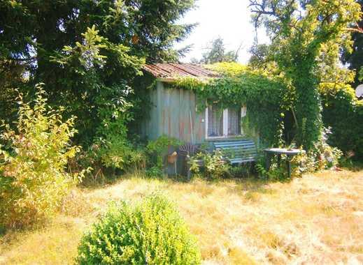 METEOR IMMOBILIEN : Gartengrundstück im Klütviertel