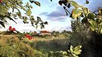 Bungalow EFH Grundstück