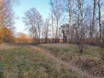 Noch zwei Baugrundstücke in Sperenberg