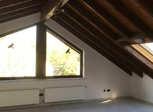 Vollständig renovierte 2-Zimmer-DG-Wohnung mit EBK in Mainz