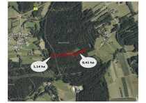 1 6 ha Waldfläche bei