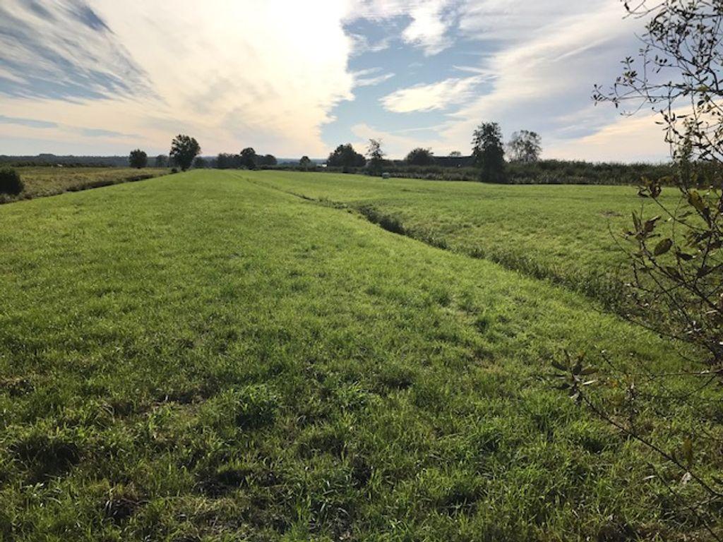 Landwirtschaftliche Grünfläche