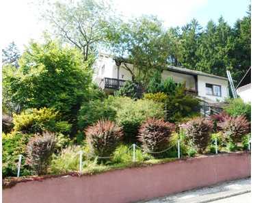 Landhaus zum Wohnen & Arbeiten ! renoviert, Bäder, Böden, Fenster, Türen neu! 288qm2Wf, 1350qm2Grund in Bad Grund (Harz)