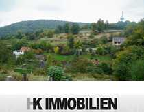 Grundstücke-insgesamt 10 004 m² - incl 2