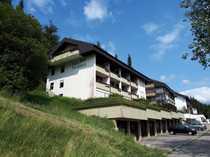 RESERVIERT - Provisionsfreie modernisierte 1-Zimmer-Wohnung mit