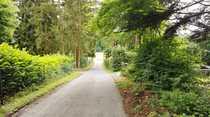 °°° Traumhaftes Freizeitgrundstück Ein Waldstück