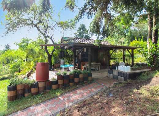 Freizeitparadies für Familien: Großzügiges Schrebergarten-Grundstück in grüner Lage