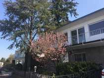 Premiumlage mit Burgblick freistehendes Einfamilienhaus