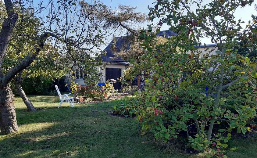 Blick vom Garten auf Haus