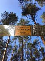 Waldgemeinde Borkwalde - 4 BA Befristetes