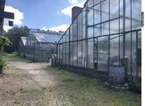 Bild Garten-und Landschaftsbau vielseitig nutzbar u. Einfamilienhaus in Ommersheim