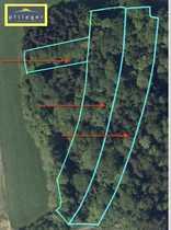 1 32 ha Waldfläche bei