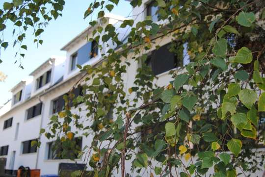 hwg Plus - Barrierearme 2-Zimmer Wohnung mit Terrasse und Tageslichtbadezimmer mit Wanne und Dusche!