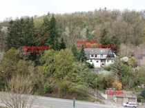 Großes Doppelhaus mit zusätzlichem Waldgrundstück