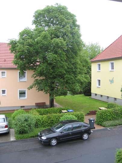4-Raumwohnung in Ortsrandlage inmitten von viel Grün