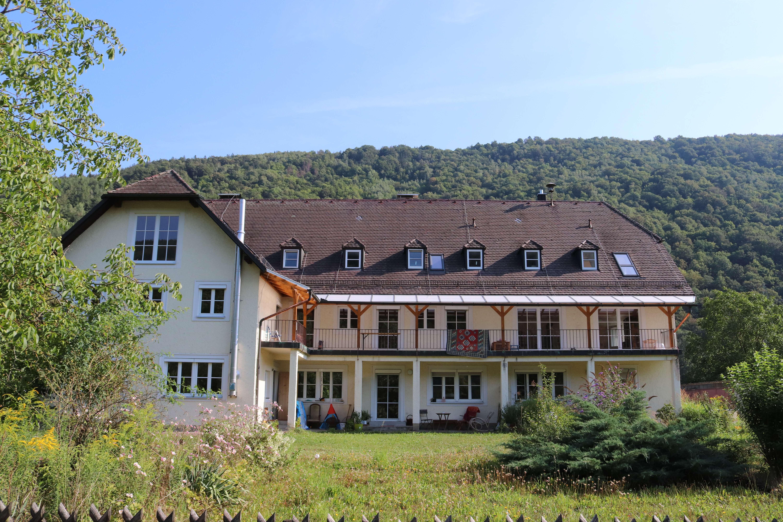 Helle, grundsanierte Zweizimmerwohnung mit großem Garten - direkt an der Donau (incl. Hausstrand) in