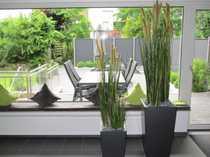 Büros in angenehmer grüner Umgebung