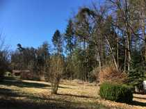 Freizeitgrundstück in einem Waldstück bei