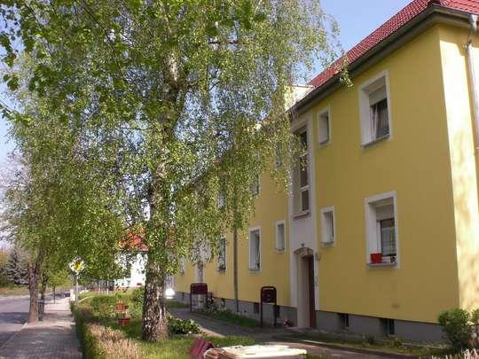 TOP renovierte 2-Raum-Erdgeschosswohnung in Stadtrandlage