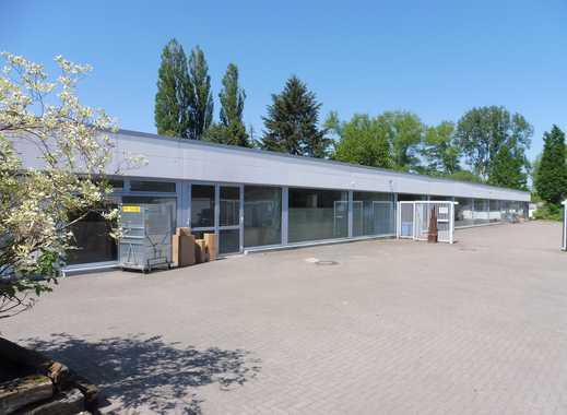 CLASSIC IMMOBILIEN: Lager- und Ausstellungshalle - teilbar ab 275 m²