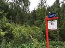 Bauen in Waldnaher Idylle - Grundstück
