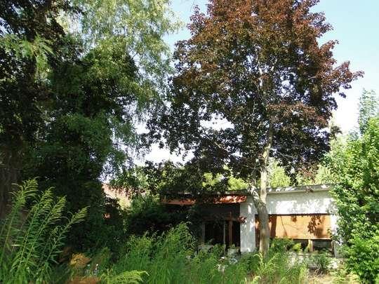 Großes Baugrundstück in guter Wohnlage - Bild 8