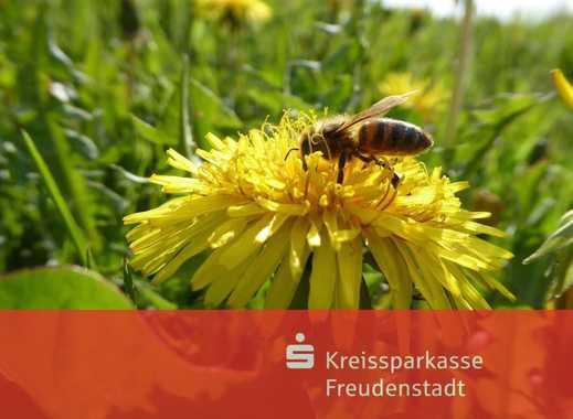 Unbebautes Grundstück mit positiver Bauvoranfrage in Horb-Altheim