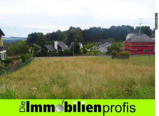Attraktives Baugrundstück am Stadtrand von Helmbrechts