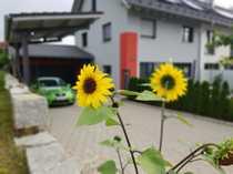 Naturnahes Wohnen vor den Toren