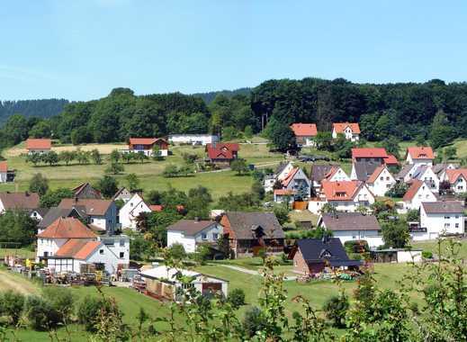 Vollständig renovierte 3-Zimmer-Terrassenwohnung mit Balkon und Einbauküche in Steinheim
