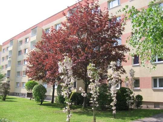 2-Raum Wohnung in Borna Ost