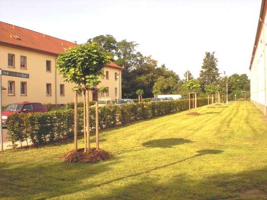 Ab Oktober wieder zu haben - Familienwohnung in Neukieritzsch