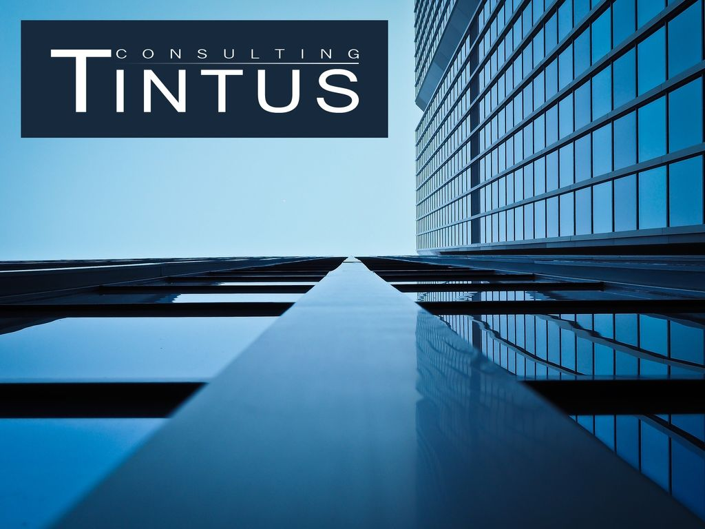 LOGO Tintus Consulting GmbH
