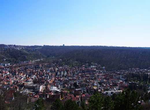 Großzügige Wohnung mit Traumblick am Hasenberg - möbliert