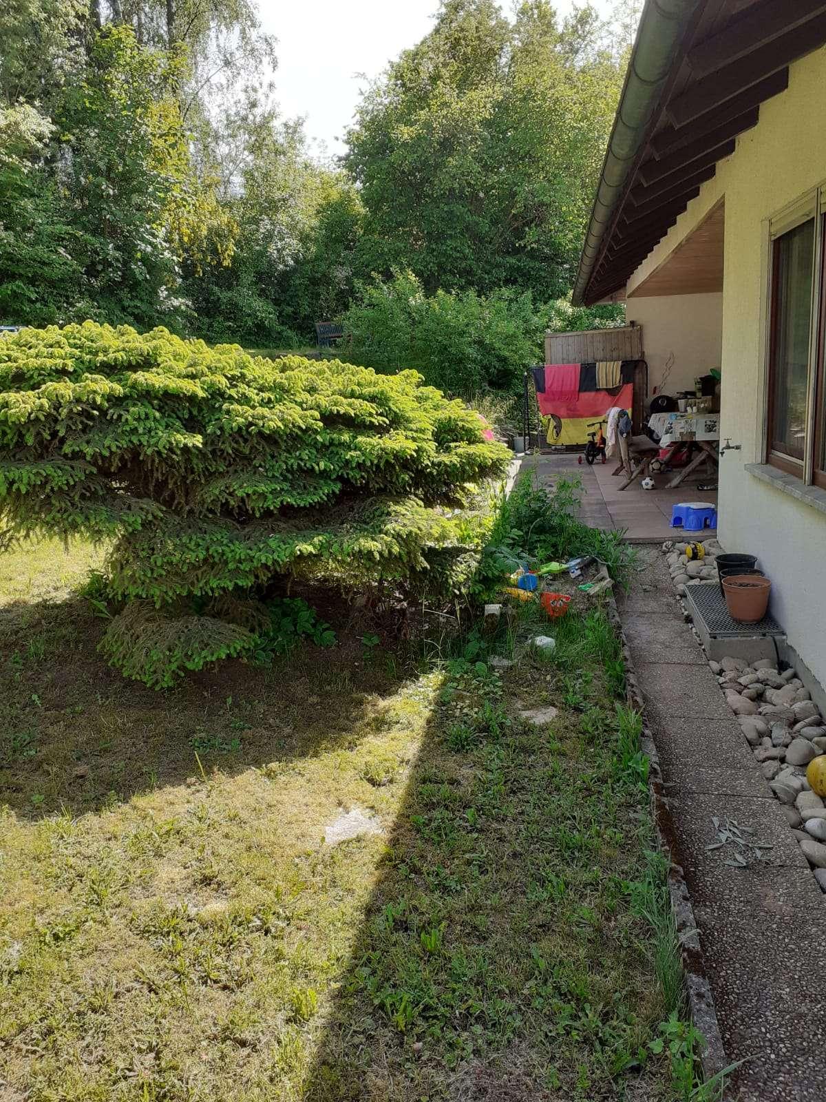 Geräumige und sanierte 3-Zimmer-Wohnung mit Terrasse und Einbauküche in Altertheim in