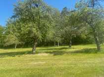 Wald- und Wiesengrundstück