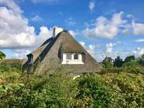 Süderheidetal - Grundstück mit Altbestand