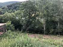 2153 qm Wiesengrundstück in Leidersbach