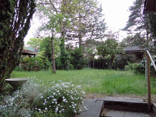 Großes Baugrundstück in schöner Wohnlage - Bild 8
