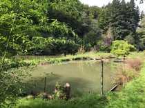 Außergewöhnliche Teichanlage in ruhiger Lage