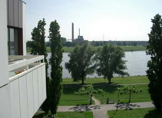 Genießen Sie den Sonnenuntergang mit Blick auf den Rhein