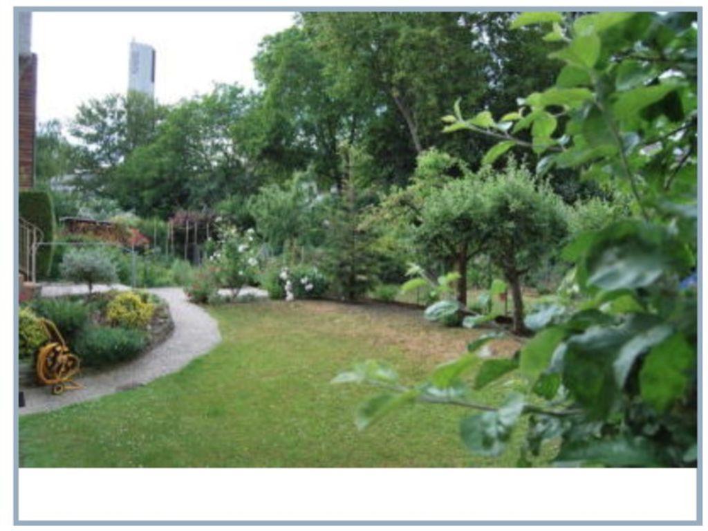 Garten Sommer Ansicht