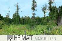 HEIMArT Waldgrundstück nahe Raisting gegen