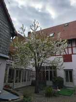 Mehrfamilienhaus Fachwerk-Hofreite in Frankfurt Unterliederbach