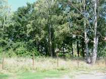 Baugrundstück in Schildow
