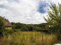 Baugrundstück mit Grünland