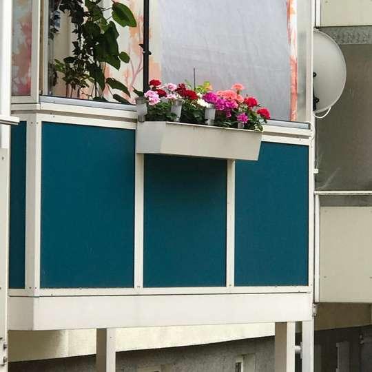 Wohlfühloase Balkon, lassen Sie sich das nicht entgehen