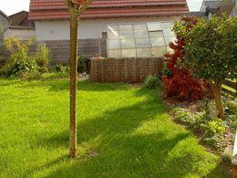Garten EFH