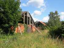 Bild Mehr als ein Hektar Wald und Grünland nahe Stettin